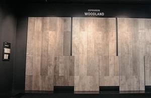 Новая коллекция Котто д'Эсте - Kerlite Woodland